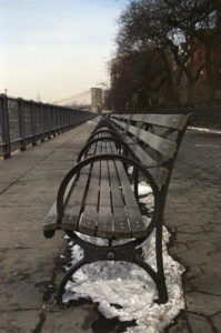 A line of benches in Brooklyn go into the distance.