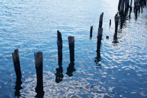 The remnants of a long disregarded dock emerge from water.